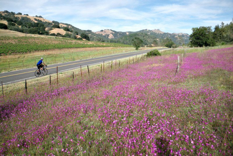 self guided cycling tours in california