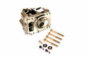 valve guide briggs animal lo206