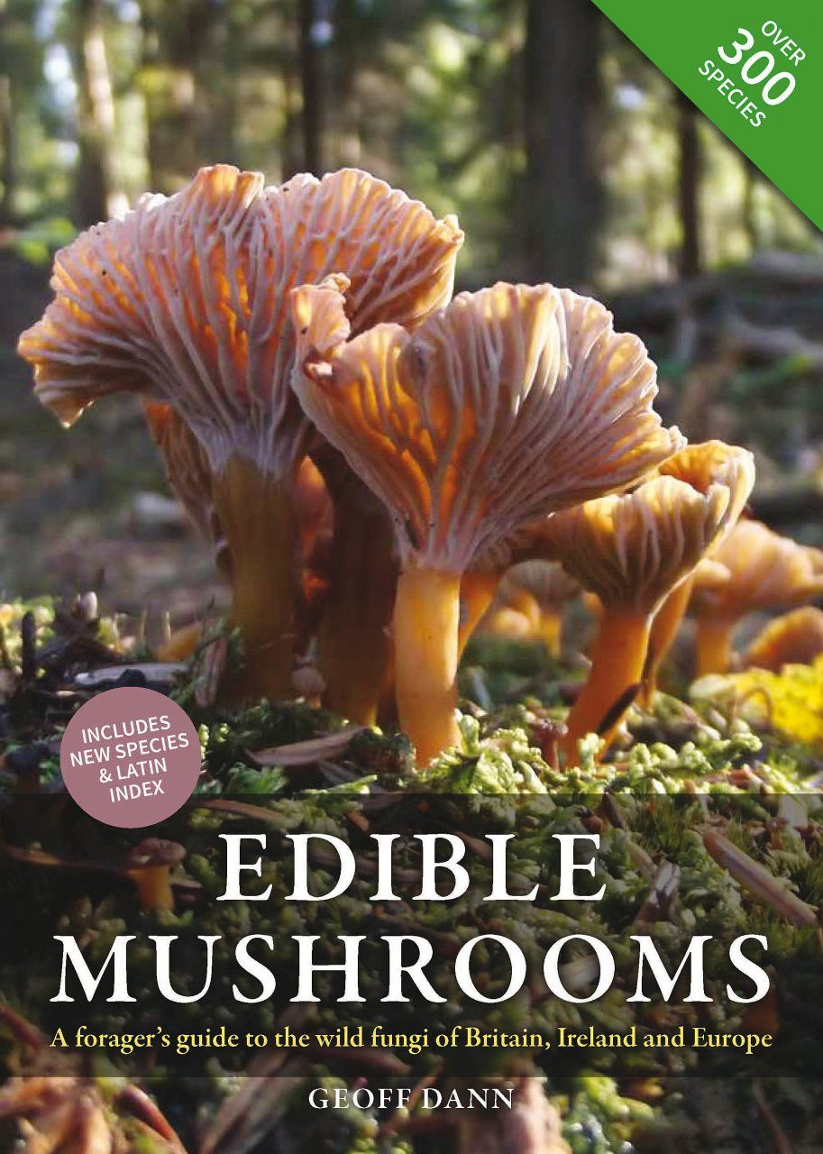 illustrated guide mushrooms other fungi kibby geoffrey