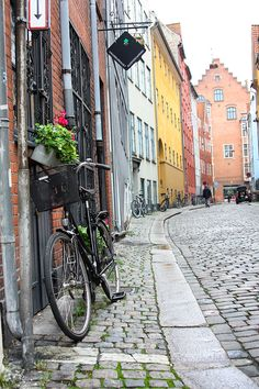 how to become a tour guide in denmark