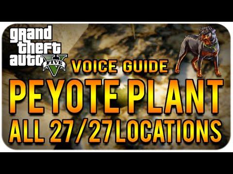 gta 5 peyote plant location guide xbox 360
