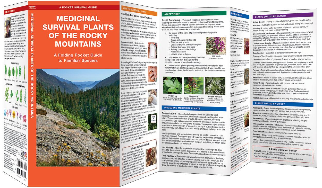 survival guide edible plants pdf