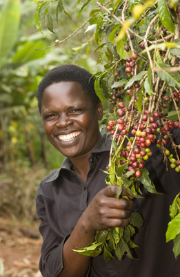 oxfam fair trade coffee guide