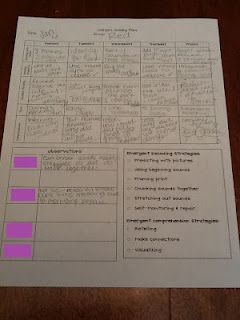 bobbi and the play guided reading plan
