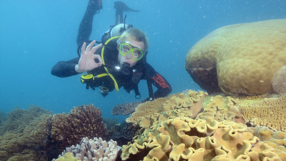 great barrier reef tourist guide