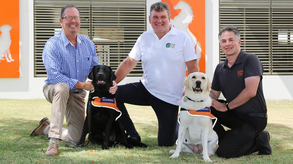 guide dogs australia jobs qld