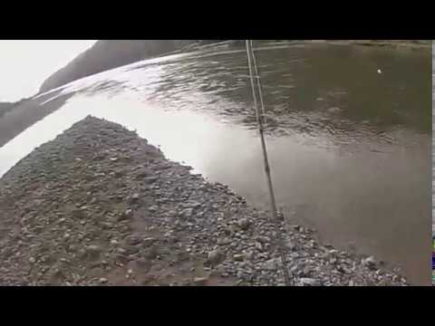 brian willson nz trout guide