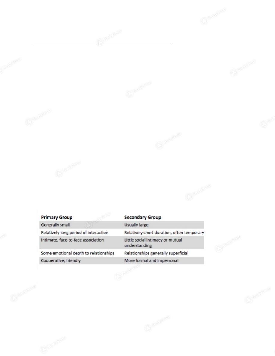 sociology final exam study guide